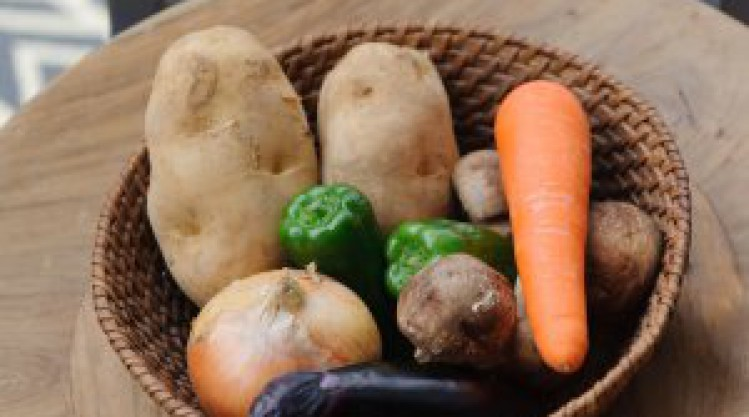 野菜にも相性があるんです。-POTAGER WORKSHOP 第六回-