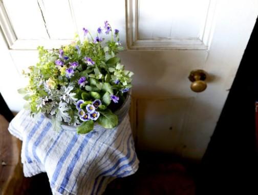 春を待ちわびるナチュラルな寄せ植え
