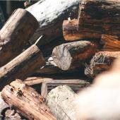 ウッドショックでどうなる? 日本の木材供給事情